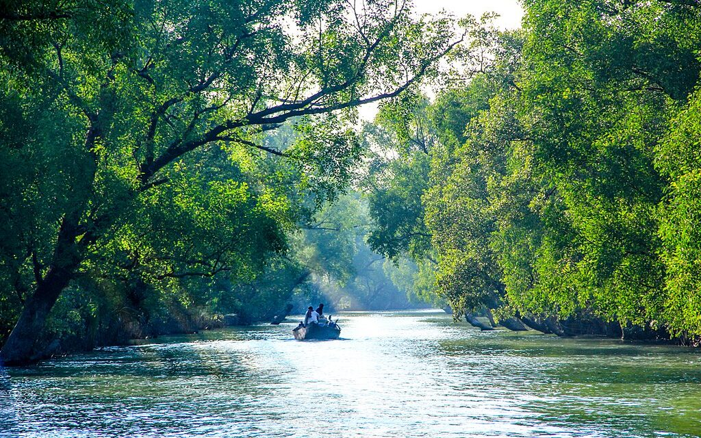 Sundarban Forest (World Heritage Site) including Bagerhat Sightseeing.(Three nights & four day).